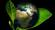 badania środowiskowe